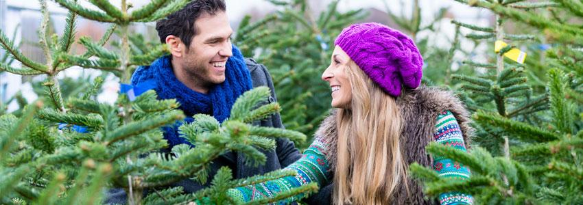 Hogg et juletre. Velg et juletre på hagesenteret, eller dra til en gård der man kan hogge juletreet selv. Dra hjem og pynt juletreet sammen. Kos!